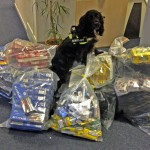 Sniffer dog Phoebe with illegal tobacco seized during raids in Eastbourne