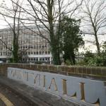 County Hall web